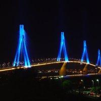 ΕΚΠΛΗΚΤΙΚΟ ΒΙΝΤΕΟ: Δείτε τι «κρύβεται» κάτω από την γέφυρα Ρίου - Αντιρρίου!