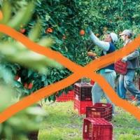 """Achtung - Achtung: Κλιμάκιο του ΙΚΑ θα """"σαρώσει"""" χωράφια & εργοστάσια στην Αργολίδα!"""